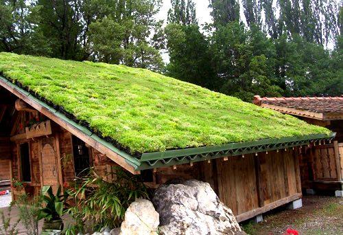 Construire une toiture végétalisée